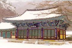 NaeJangSa1